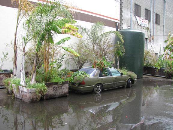 FarmLab courtyard just after some heavy rains.