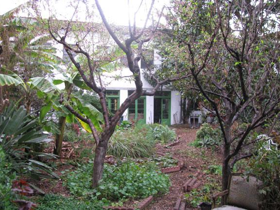 Ecovillage back yard.