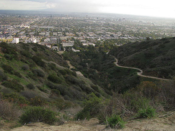 View down Runyan Canyon.