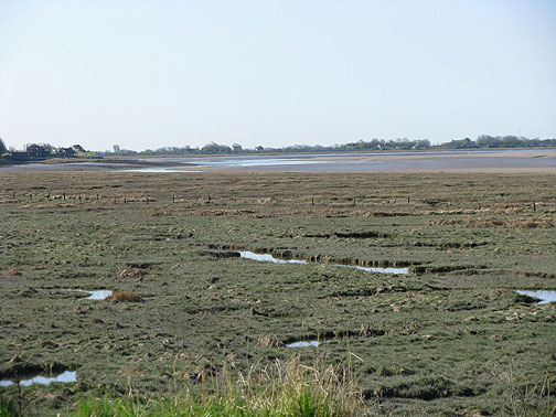 Wetlands at low tide on the River Lune, Glasson town in distance.