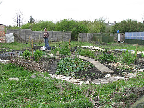 Jonathan in the allotment (community garden) in Bradford.