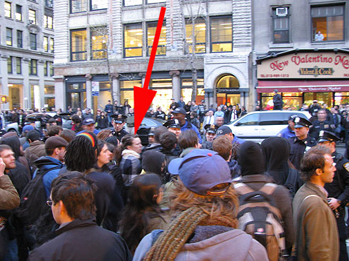 Here's Francesca in a scuffle on 5th Avenue, but she avoided arrest this time!