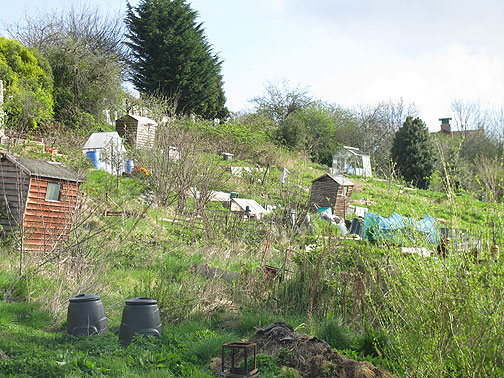 Royate Hill Allotments.