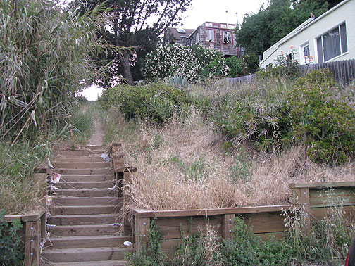 "One of many ""ghost streets"" on Bernal Heights, this one with some old wooden steps inviting the walker to enter."