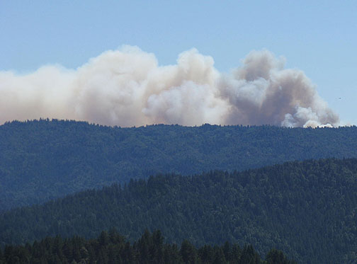 "The ""Lockheed"" forest fire in the Santa Cruz Mountains, Aug. 14, 2009."