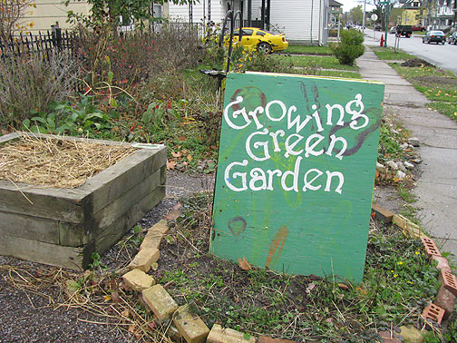 There are over 80 community gardens in Buffalo.