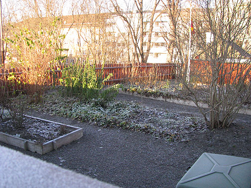 The gardens are pretty frozen now anyway!