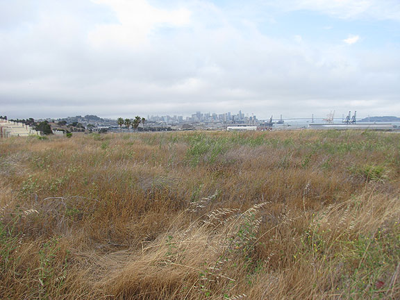 Another view from Hunter's Point towards downtown, on what will eventually be a neighborhood full of housing...