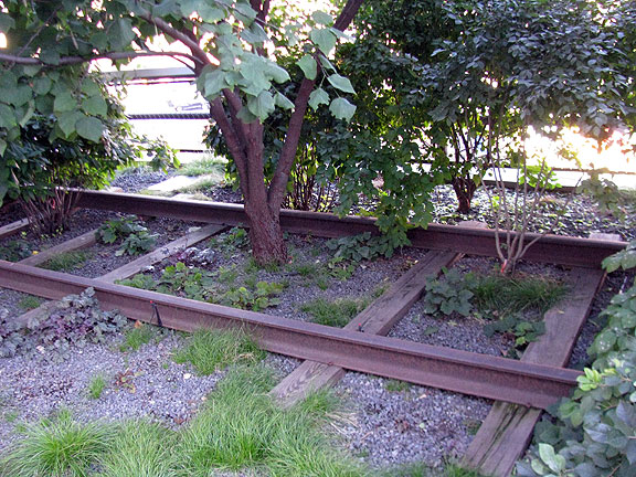 highline-tree-in-track_5024