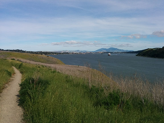 Had to put a nice photo first... this is on the Bay Trail north of Carquinez Strait looking east/southeast towards Mt. Diablo on May 4.