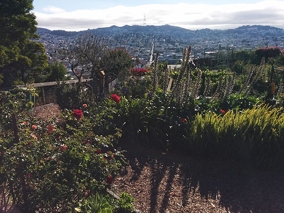 Potrero Hill Community Garden with its amazing view to the west across the Mission District to Twin Peaks.