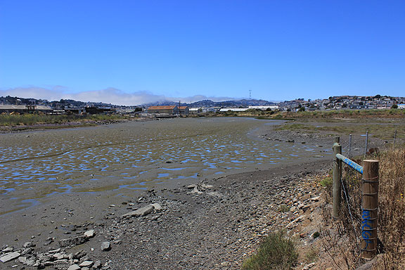 Yosemite Creek mudflats at low tide, one of the latest restoration projects going on along the southeastern bayshore in San Francisco...