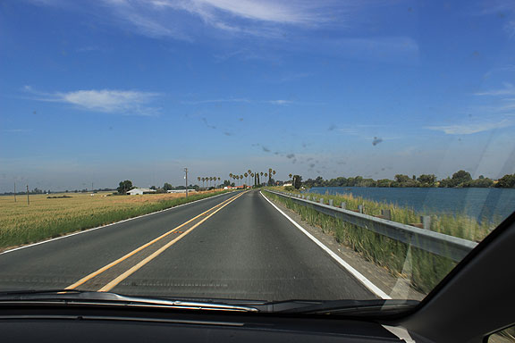 Grand Island at left, Sacramento River at right, as we roll along the levee heading north towards our next stop in Walnut Grove.