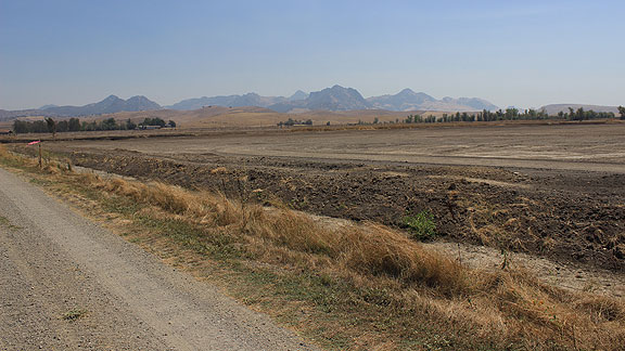 dry dirt field at edge of Butte Sink with Sutter Buttes in distance to southwest.