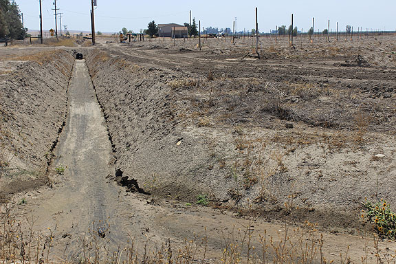 This is the same farmer's field nearer to Butte Road, with bone dry irrigation canals, and a pump and drip irrigation with nothing happening in the drought.