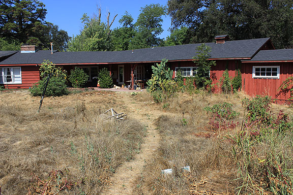 Our friends' home in Chico, also in the midst of severe drought.