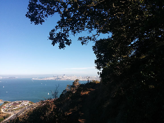 From a trail on the Marin Headlands looking back towards San Francisco from under an amazing oak tree...