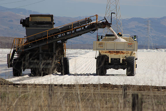Industrial salt harvesting, owned by Cargill or Morton Salt, still going strong, but maybe not for long...