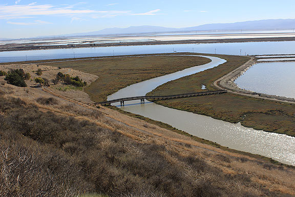 View from Don Edwards National Wildlife Refuge over Newark Slough, working salt ponds in distance.