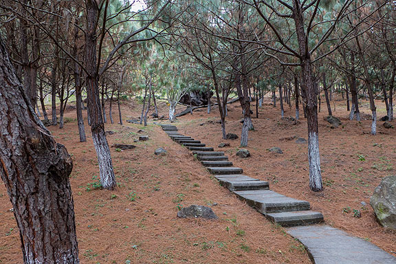 This is the path through the Parque Ecologico las Penas in Ciudad Guzman, leading up to the big volcanic boulders we climbed.