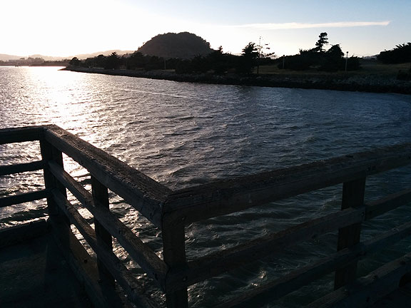 Off the end of the fishing pier at Candlestick Point State Recreation Area,  the only urban park in the California State Park system.