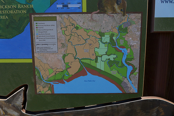 The sites we visited feature a lot of informative signage along the bayshore trails.