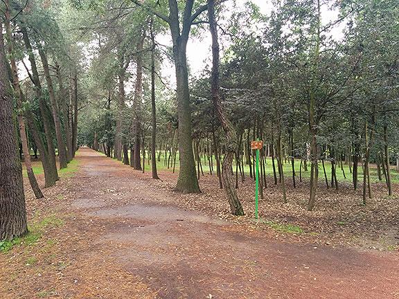 Parque Viveros