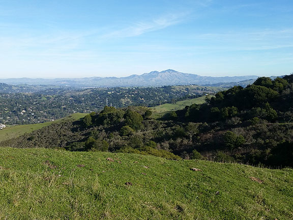 The view of Mt. Diablo from the top of the Sibley Volcano just southeast of the Caldecott Tunnel in the east bay hills.